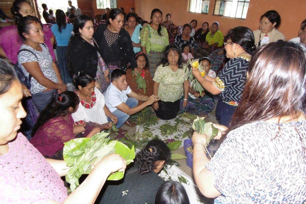 el-grado-politicas-sociales-cooperacion-guatemala