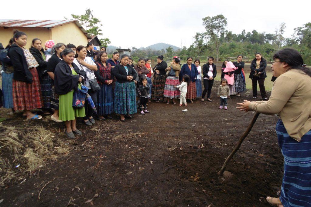 el-grado-politicas-sociales-cooperacion-guatemala-2