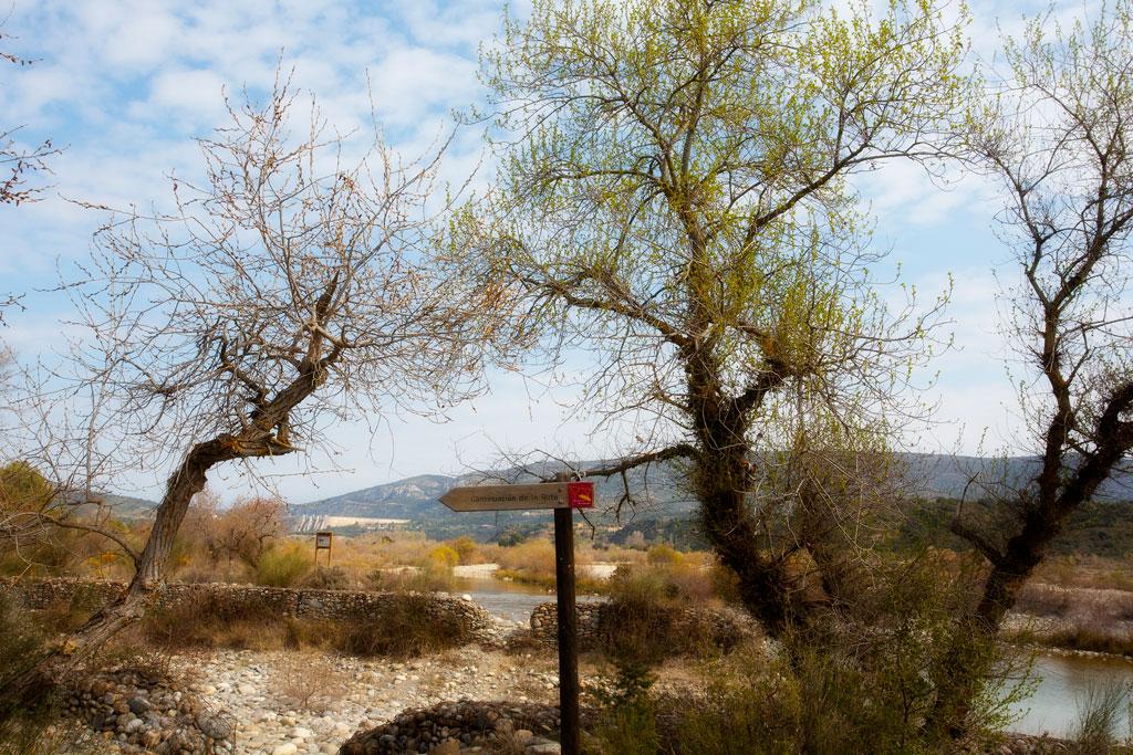 ruta-arboles-y-acueductos-3